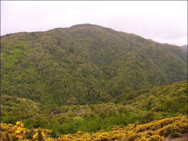 Gambar 5. Bukit Bellmont.