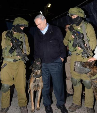 Netanyahu, Tentara, dan Anjing