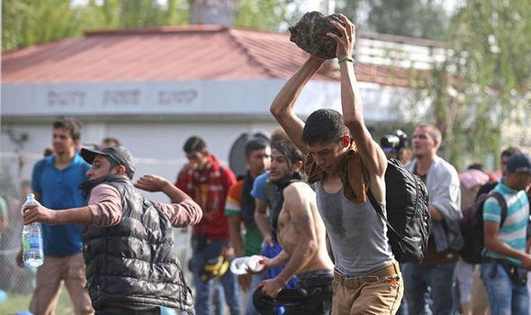 Migran yang damai